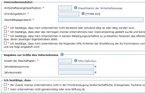 BAFA Förderantrag Unternehmensklassifikation & Bestätigung